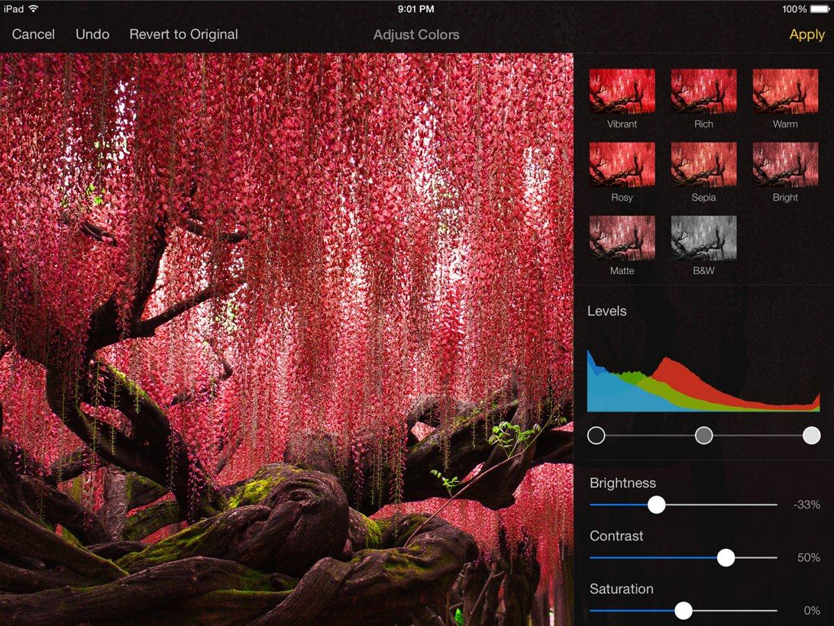 pixelmators-powerful-photo-editing-tools-arrive-on-iphone