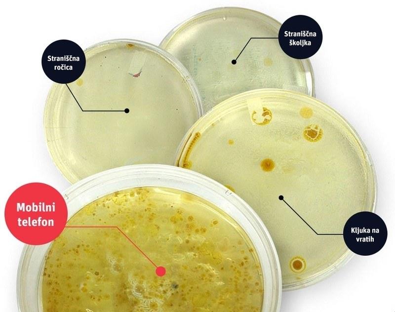 Bakterije na telefonu - več kot na javnem stranišču